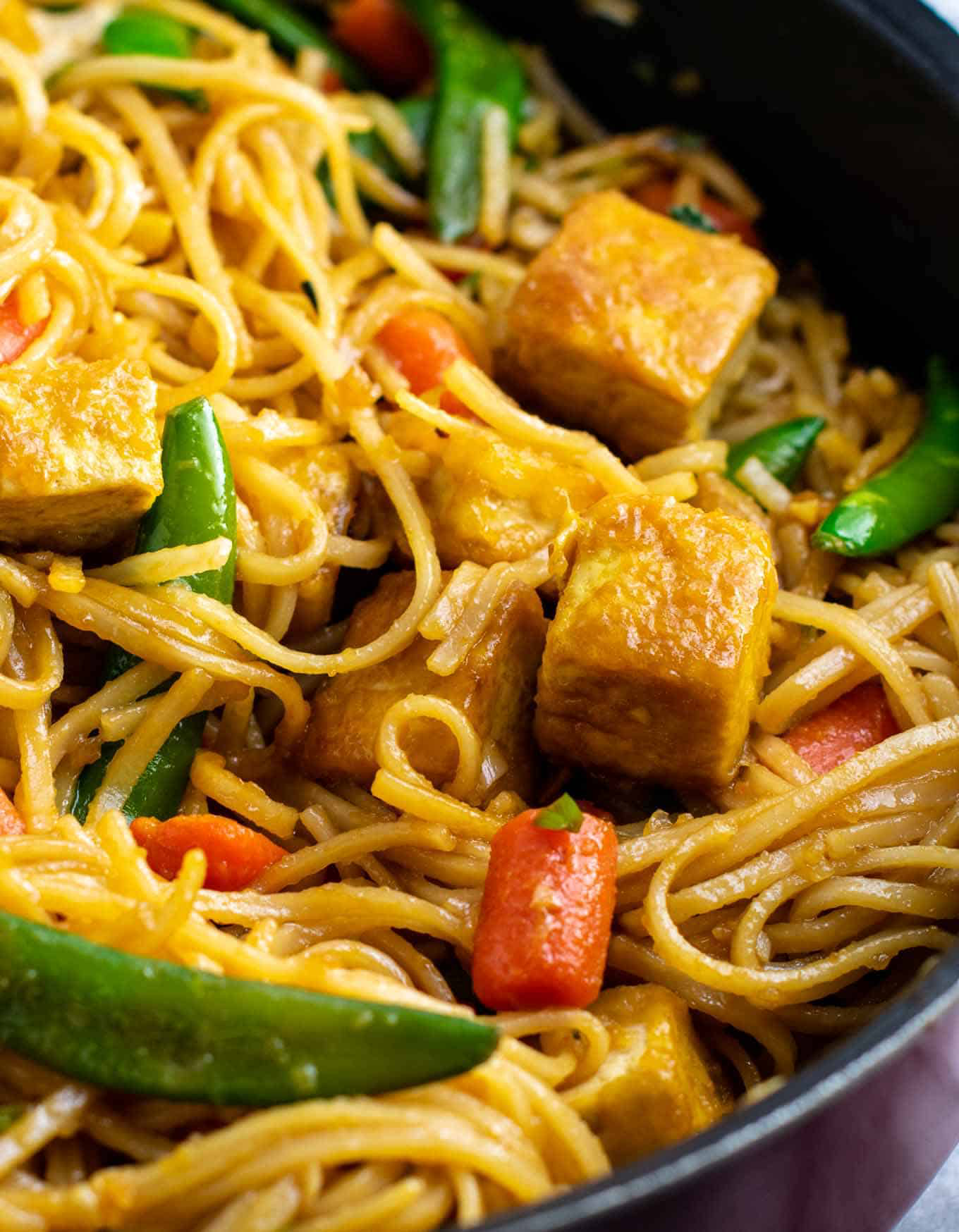 Crispy pan fried noodles w/ vegetarian